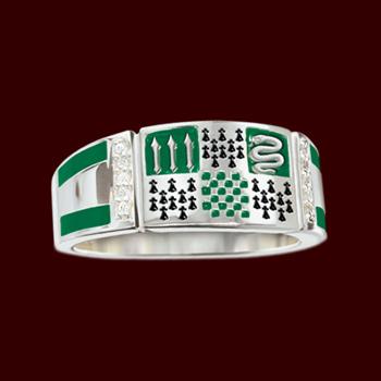 Hogwarts Schmuck - Slytherin Wappen Ring