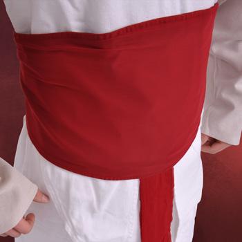 Assassins Creed Replik Sch�rpe