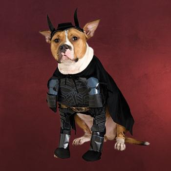 Batman - Hundekost�m