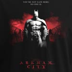 Batman Arkham City T-Shirt - Red Sky