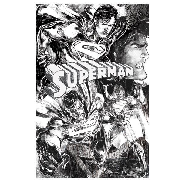 Superman DC Comics Hero T-Shirt lizenziert großer Frontprint schwarz ...