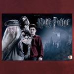 Harry Potter - Broschur XL Kalender 2014