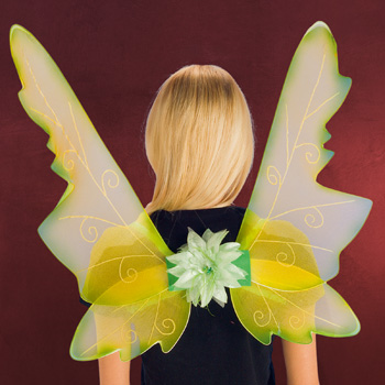 Elfenflügel grün-gelb